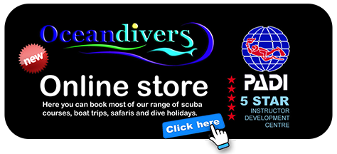 Link Panel to Oceandivers new online store