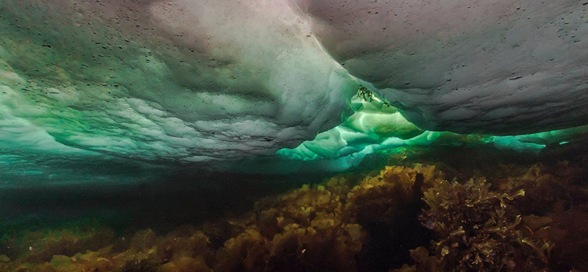 Looking up under sea ice